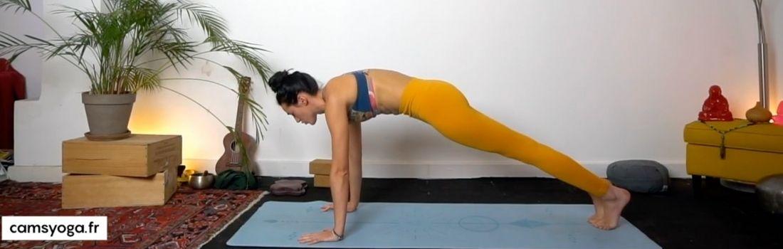 planche cam's yoga