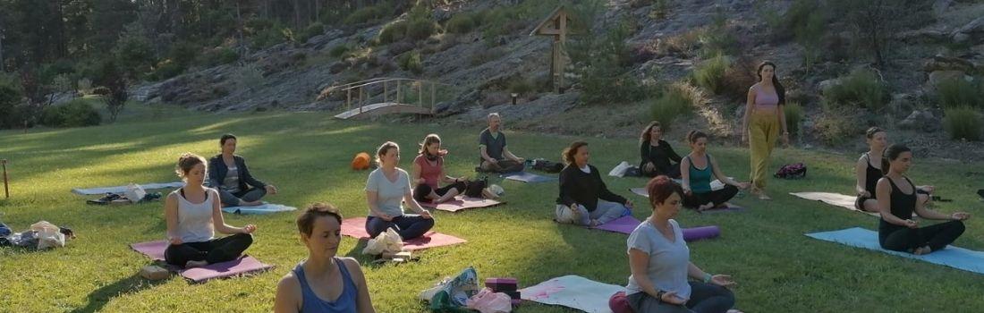 yoga et écologie